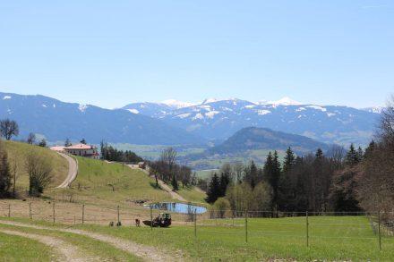 Wunderschöne Ausblicke über die Hügel- und Berglandschaft des Ennstals.