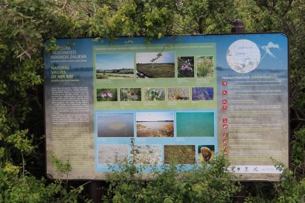 Das Biotop in der Bucht von Nin beherbergt viele seltene Pflanzen und Tiere.
