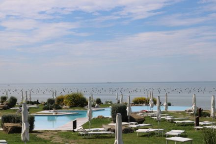 Der exklusive Beach Club in Porto Piccolo.
