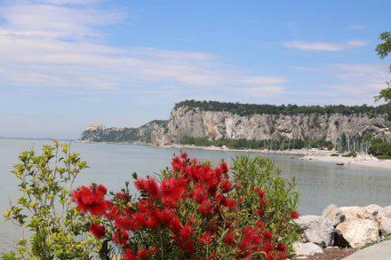 Campingstopp für Triest und eine Wanderung zum Schloß Duino
