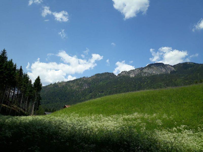Laas liegt auf 831 Meter Höhe.