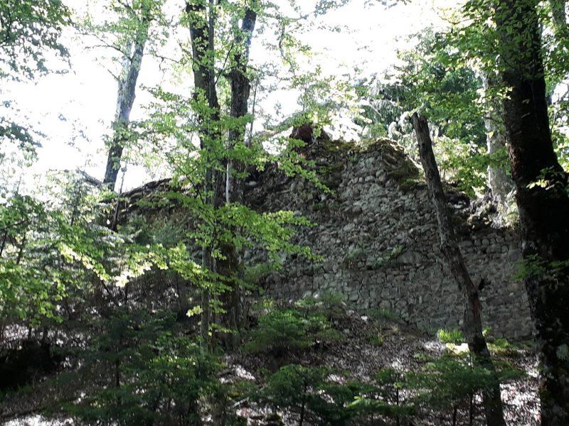 Nur noch wenige Mauern der Burg Pittersberg sind zu sehen.