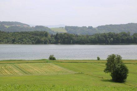 Der Grabensee liegt eingebettet in grüne Wiesen und Wälder.