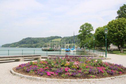 Der Hafen von Mattsee mit schöner Blumenrosette.