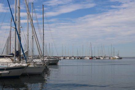 Zahlreiche Segelboote im Hafen von Sistiana.