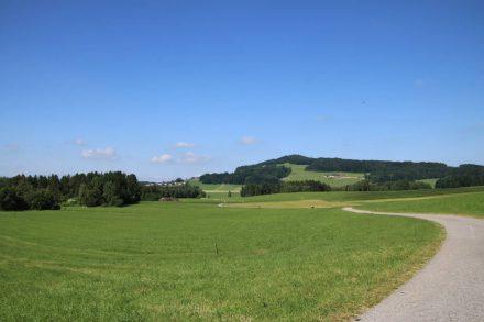 Von Schleedorf schlängelt sich der Fahrradweg durch ein grünes Naturschutzgebiet.