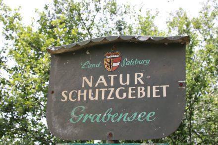 Der Grabensee steht unter Naturschutz.