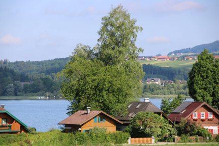 Zwischen Kirchfenning und Seebrunn.