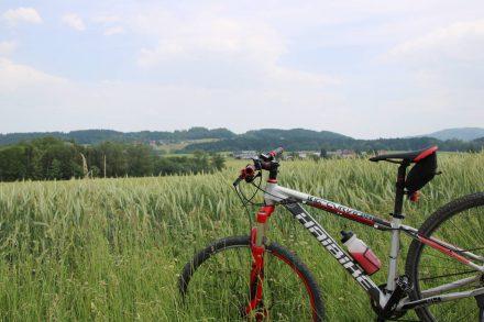 Die Seen-Radtour um den Obertrumer See, den Grabensee und den Mattsee.