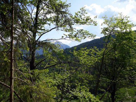 Steil hinauf geht es hinter Laas zur Burgruine Pittersberg.