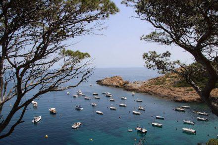 Der wunderschöne Cami de Ronda läuft großteils direkt an der Costa Brava entlang.