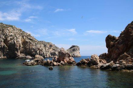 Im Zentrum der Medes Inseln stoppt das Glasboden-Boot, damit wir die Unterwasserwelt bewundern können.