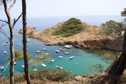 Entlang des Cami de Ronda entdeckt man immer wieder traumhafte Buchten.