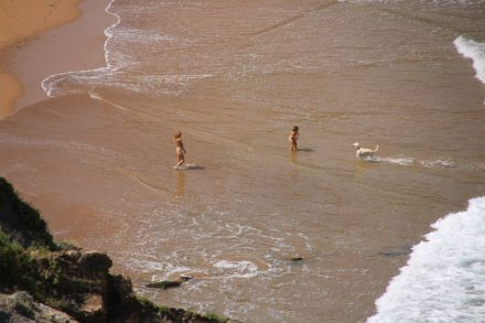 Viel Spaß haben diese Kids mit ihrem Hund am Strand.