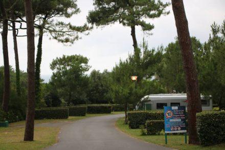 Große Stellplätze im Grünen oder direkt an der Steilküste im Camping Le Pavillon Royal.