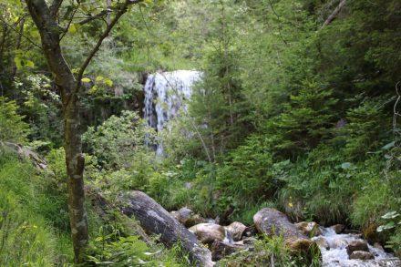 Kurz vor Srednji Vrh liegt einsam ein Wasserfall im Graben.