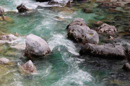 In dem Wildwasser der Soca ist auch die berühmte, köstliche Soca Forelle beheimatet.