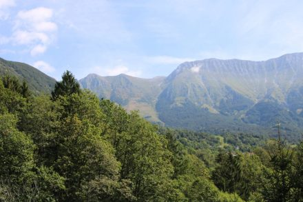 Blick in den wunderschönen Triglav Nationalpark.