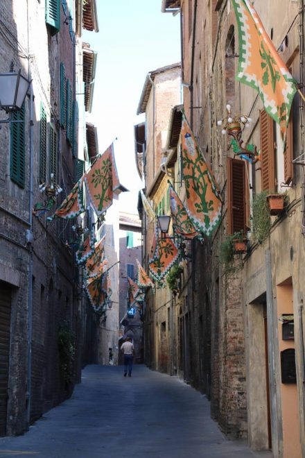 17 verschiedene Bezirke gehören zu Siena - jeder hat eine eigene Flagge.