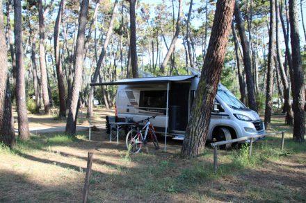 Gemütliche, schattige Stellplätze im Camping Baia Verde.