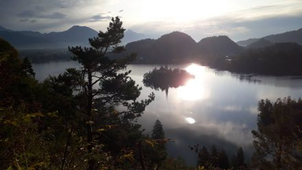 Wunderschöne Morgenstimmung über dem blöder See mit der Bleder Insel.