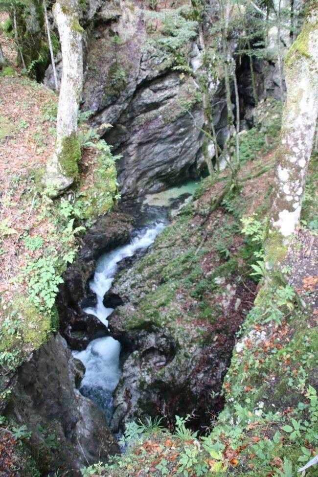Tief unten zwischen den grün bewachsenen Felsen fließt die Mostnica.