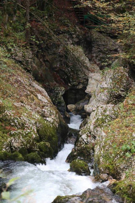 Die Mostnica zwängt sich durch die enge Felsschlucht.