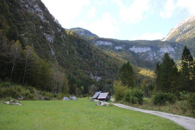 Das letzte Stück der Wanderung zum Mostnice Wasserfall über grüne Almwiesen.