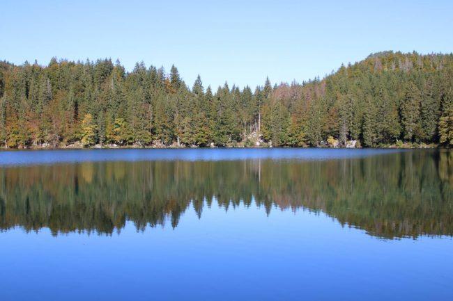 Tiefblau leuchtet der untere Lago di Fusine, der von Wald eingerahmt ist.