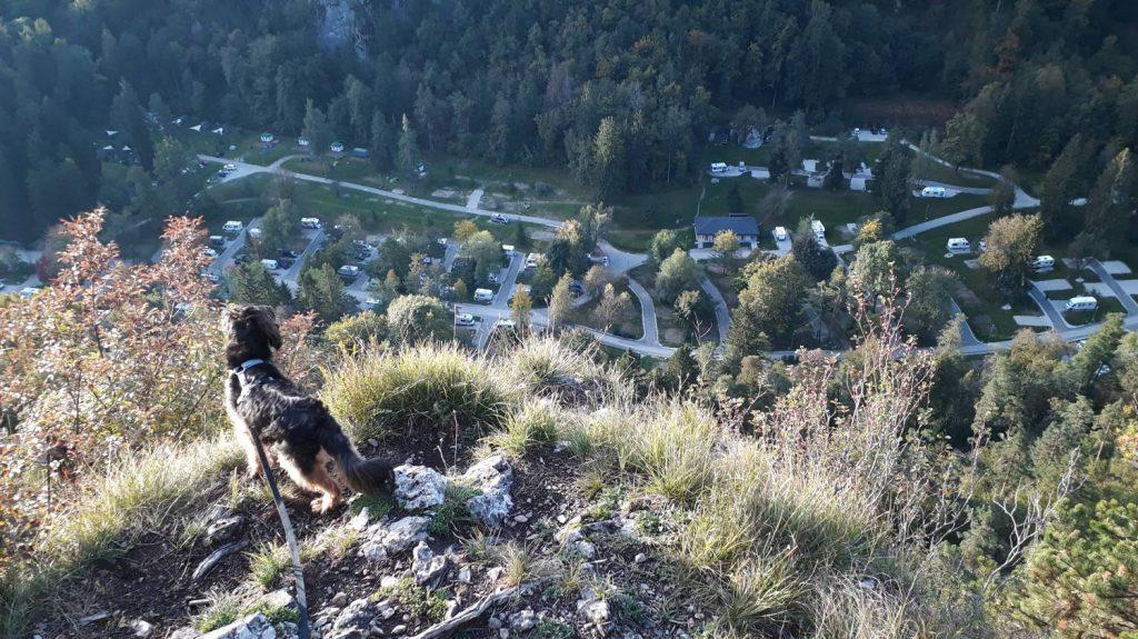 Blick von oben auf den Campingplatz und unseren Adria Twin.