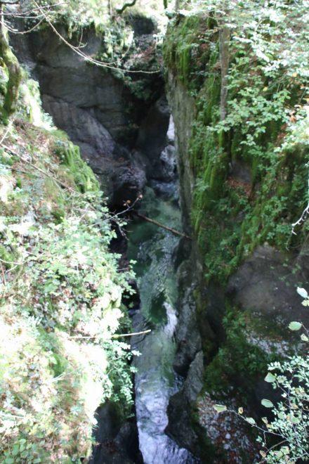 Grün bemoste und bewachsene Felsen und dazwischen die Mostnica.
