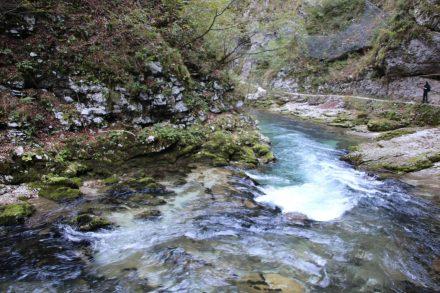 Die Vintgar Schlucht nördlich von Bled in Slowenien.