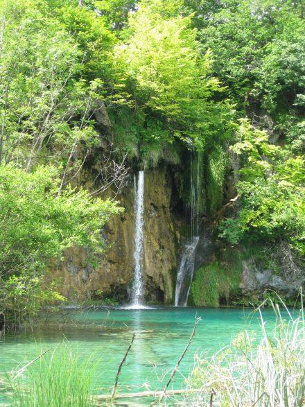 Viel grüne Flora, türkisfarbenes Wasser und endlos viele Wasserfälle im Nationalpark Plitvicer.