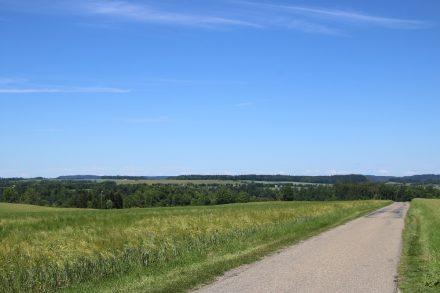 Sanfte, grüne Hügel auf der ersten Etappe des Neckartal Radwegs