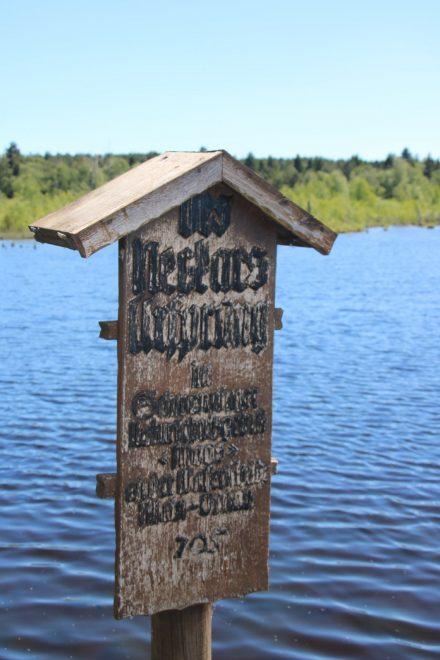 """Diese kleine Tafel bezeugt """"Des Neckars Ursprung"""""""
