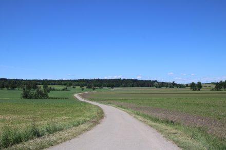 Leicht hügelig, über viele Feldwege und Wiesen führt die erste Etappe des Neckartal-Radwegs