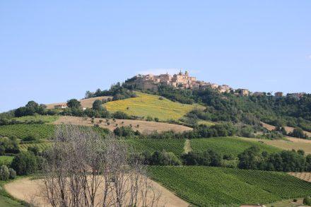 Wie in der Toskana liegen die kleinen Städtchen dekorativ auf den Hügeln der Marken