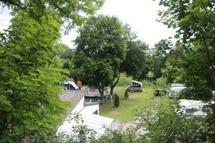 Grüner Campingplatz direkt am Neckar und in Gehnähe zur Innenstadt von Tübingen.