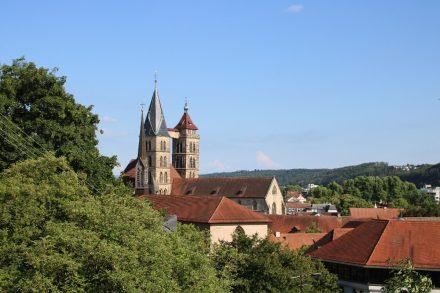 Blick von den Weingärten auf die Häuserdächer von Esslingen.