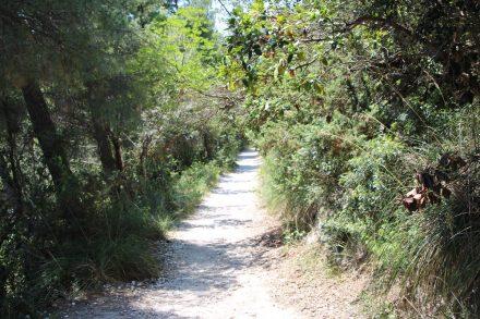 Die Küstenlandschaft der Marken ist mit dem Pro Regionale del Conero geschützt