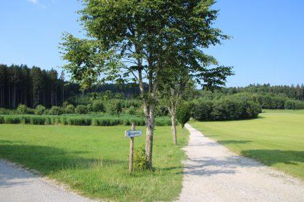 Südlich von Aying und Grosshelfendorf liegt der Berg Tier Park Blindham