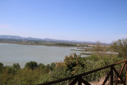 Auch der kleine, naturbelassene Lago die Montepulciano ist im grünen Umland eingebettet