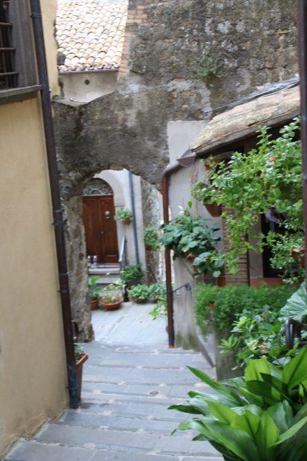 Winklige Gassen, alte Häuser und dazwischen viel Grün in der Altstadt von Marta