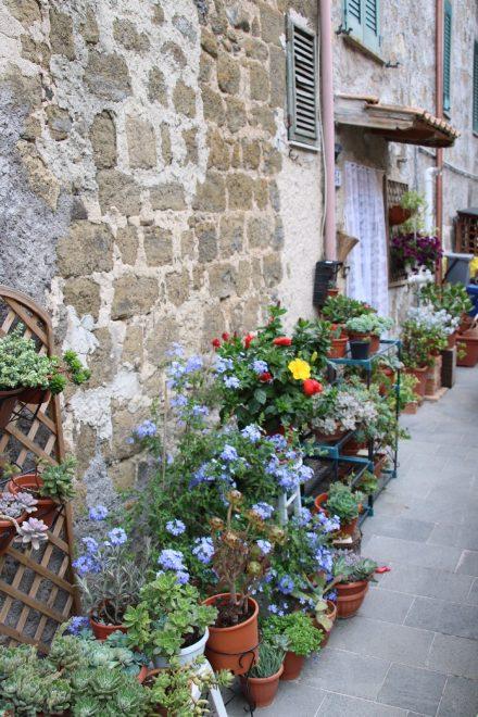 In den Gassen von Marta blühen die etwas anderen Gärten