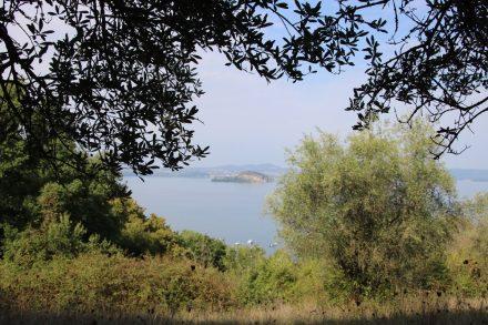 Durch Wälder und Felder zurück zum Seeufer