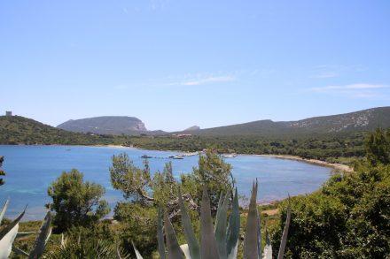 Vom Camping Laguna Blu geht es über eine schöne Landstraße zum Capo Caccia