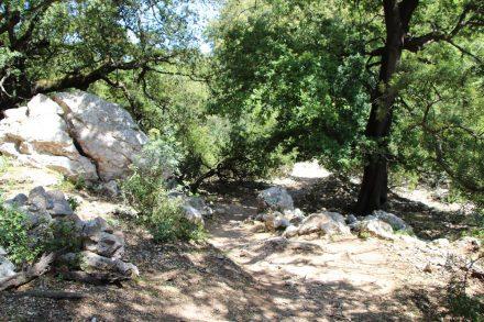 Die Wanderung verläuft durch alte Wälder, über Geröllfelder und an Kalksteinfelsen vorbei