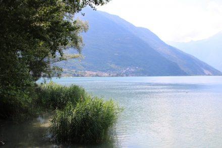 Am Ufer des Comer Sees
